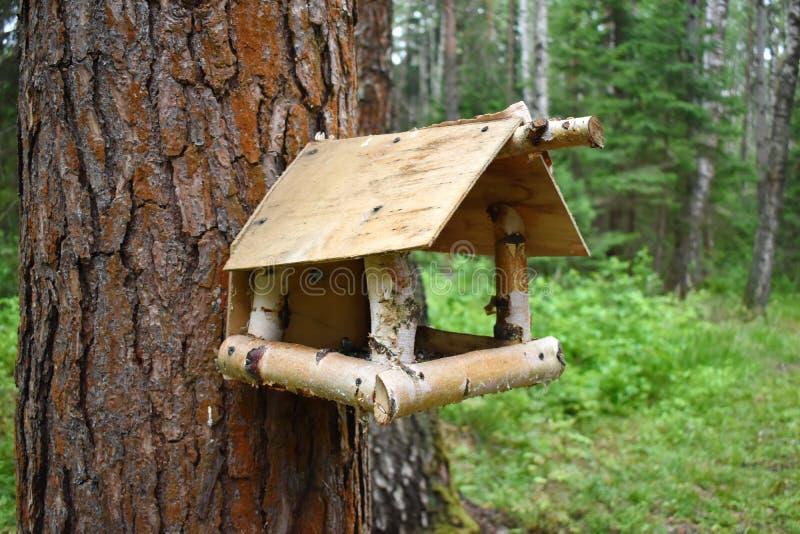 Wooden birds feeder. stock photos