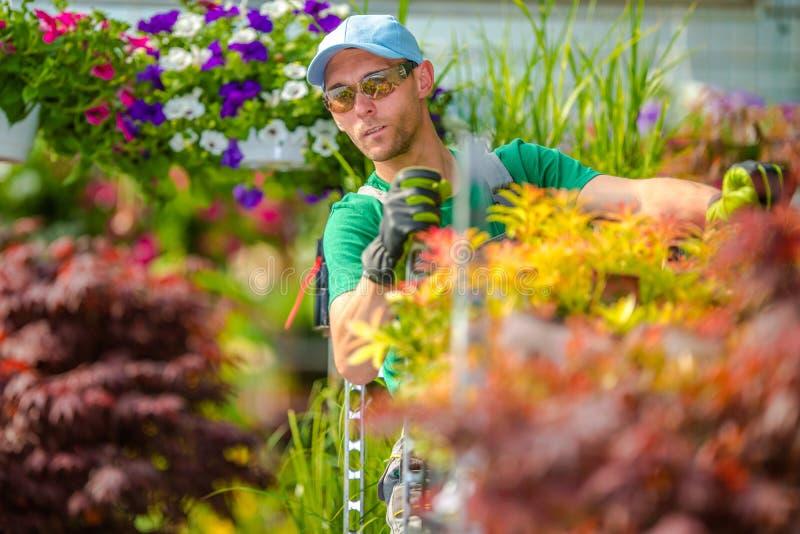 Garden Department Worker royalty free stock photo