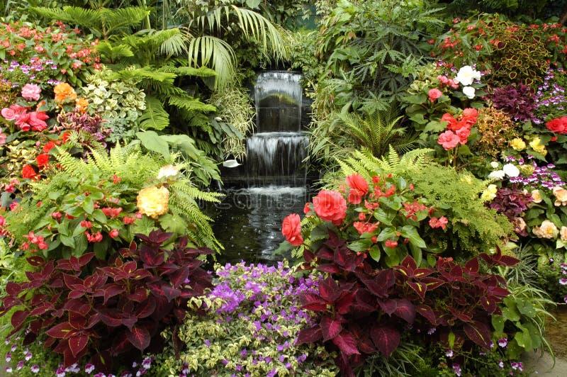 The Garden of Eden stock images