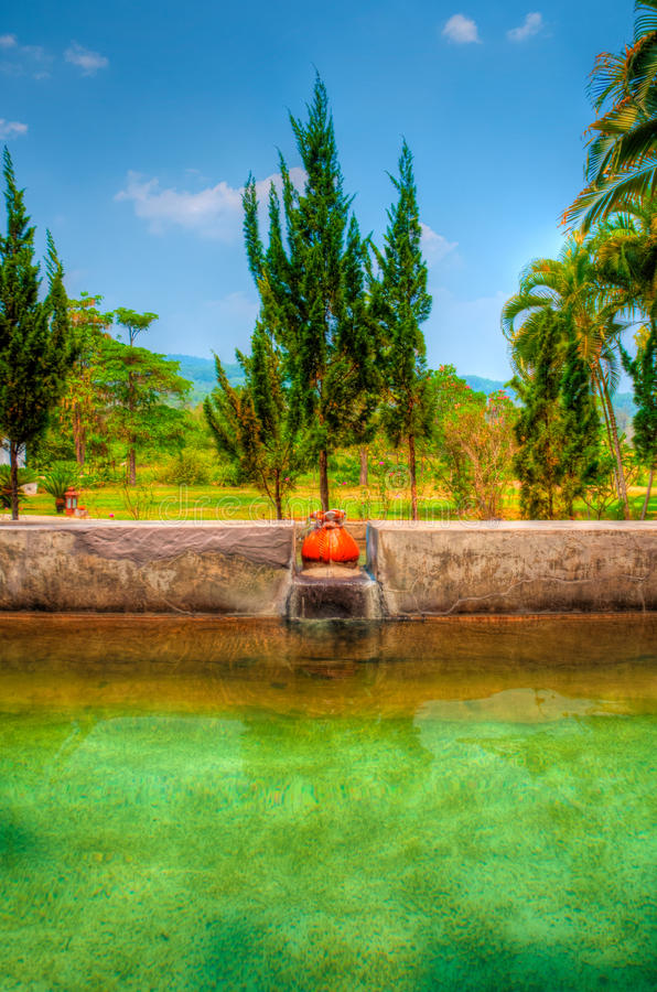 Garden. Exotic botanical garden in the North of Thailand royalty free stock photography