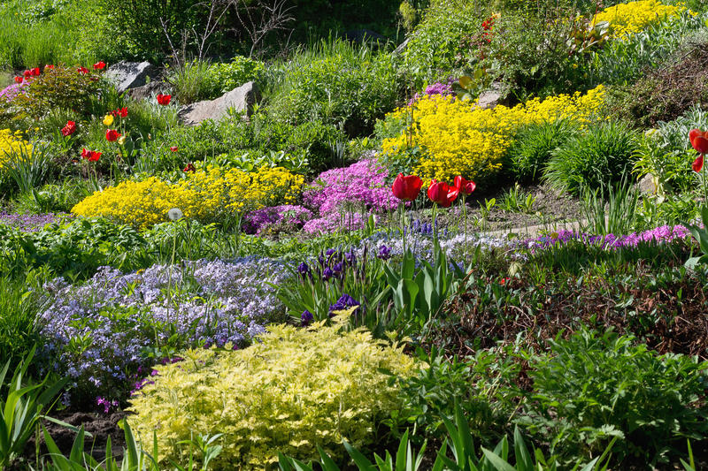 Garden with flower beds stock image