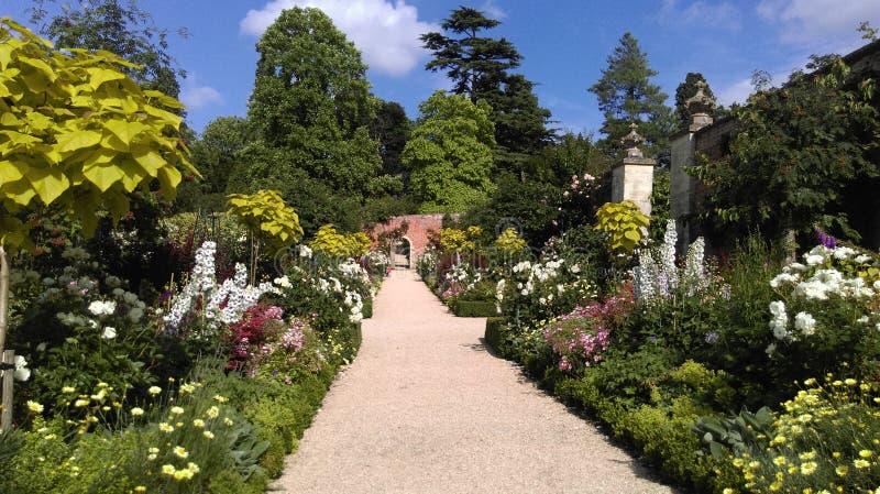 Garden, Flower, Botanical Garden, Property stock images