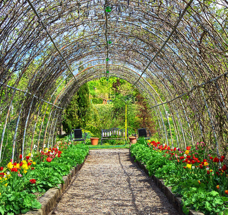 Download Garden of flowers stock photo. Image of park, natural - 18468728