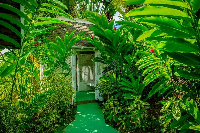 Garden Folly. Path through a lush wild garden leading to a folly in the Blue Mountains of Jamaica royalty free stock photos