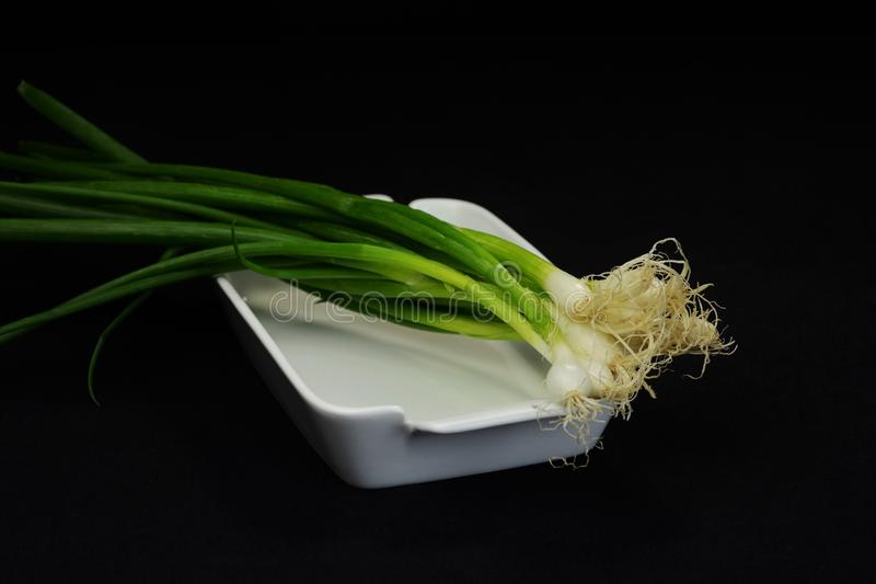 Garden Fresh Green Onions 2 stock images