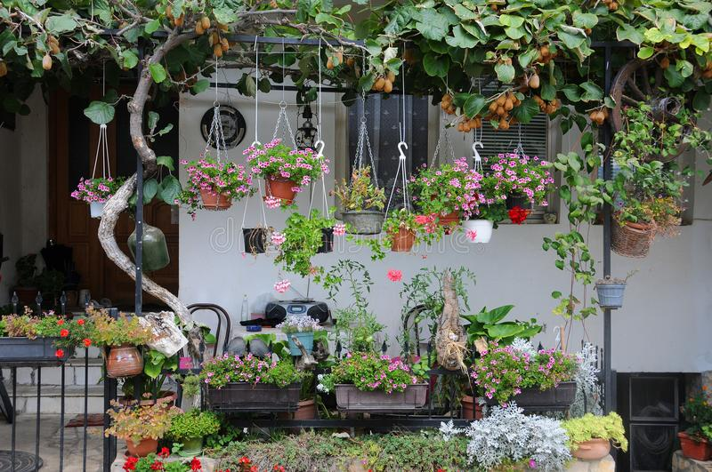 Garden in Front of the House. In Southern Europe royalty free stock images