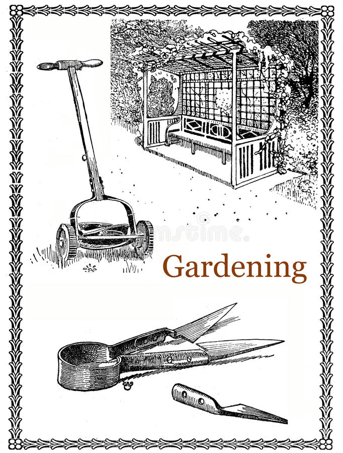 Download Garden And Gardening Tools, Vintage Illustration Stock  Illustration   Illustration Of Antique, Lawn