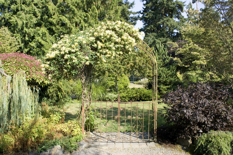 Garden gate with beautiful flowers royalty free stock images