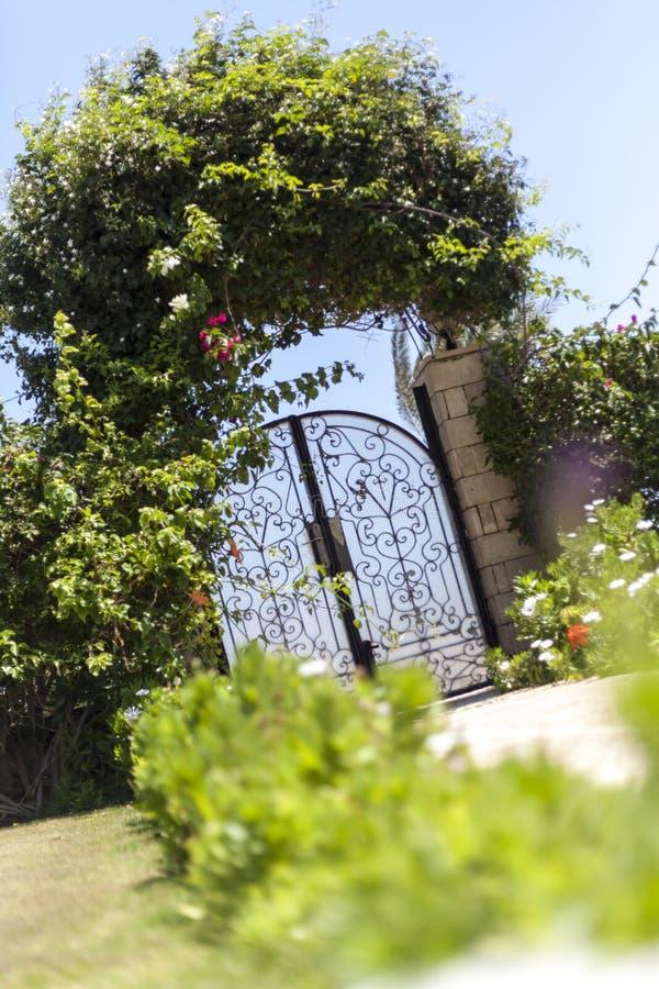 Garden Gate. Green grass in front of glass and metal garden gate stock photos
