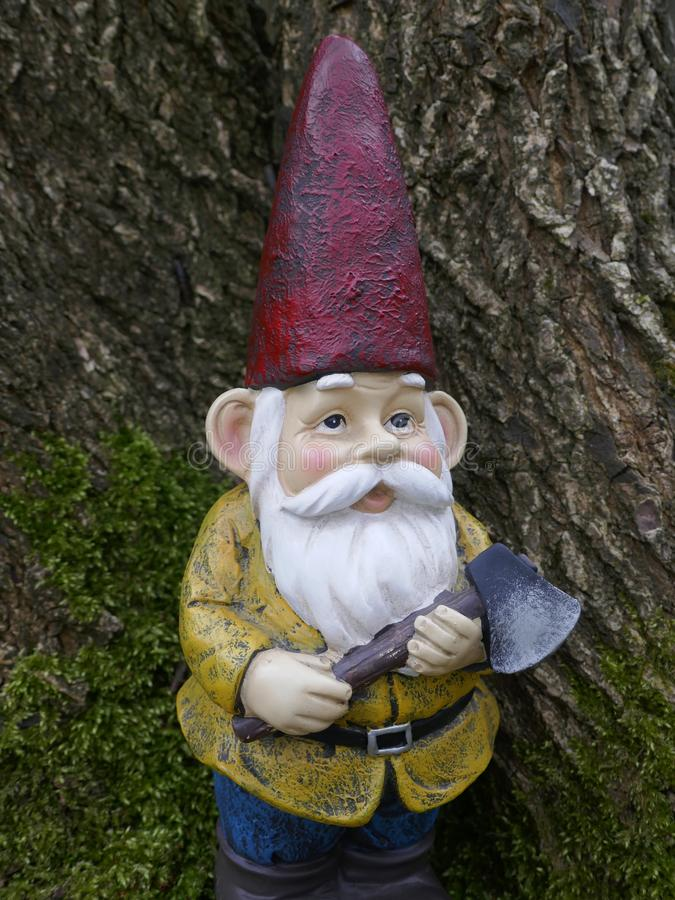 Garden Gnome in the forest stock photos