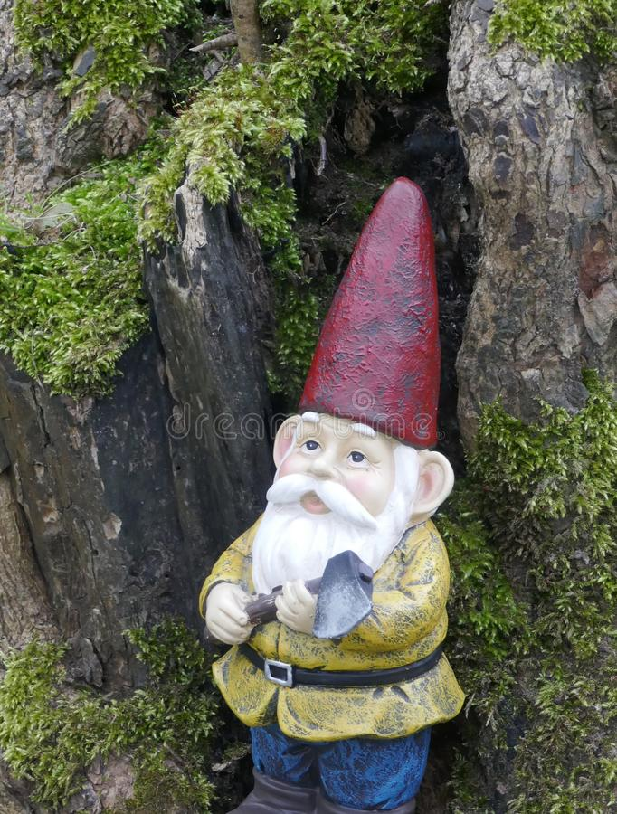 Garden Gnome in the forest royalty free stock photography