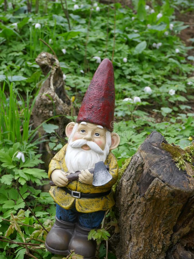 Garden Gnome in the forest royalty free stock photos