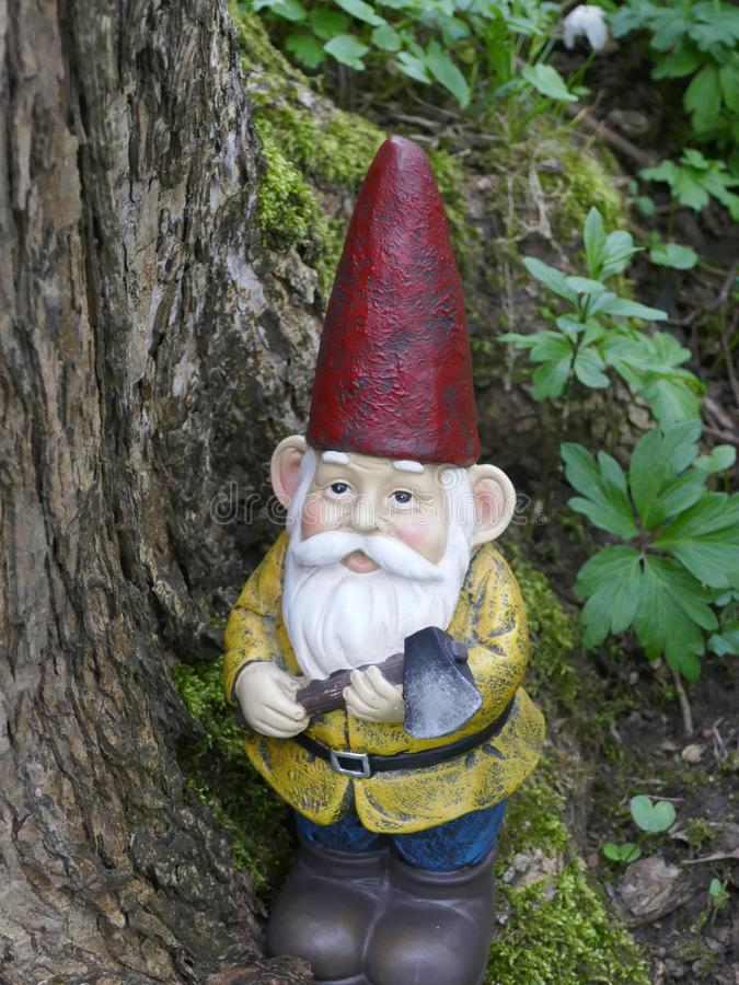 Garden Gnome in the forest stock photography