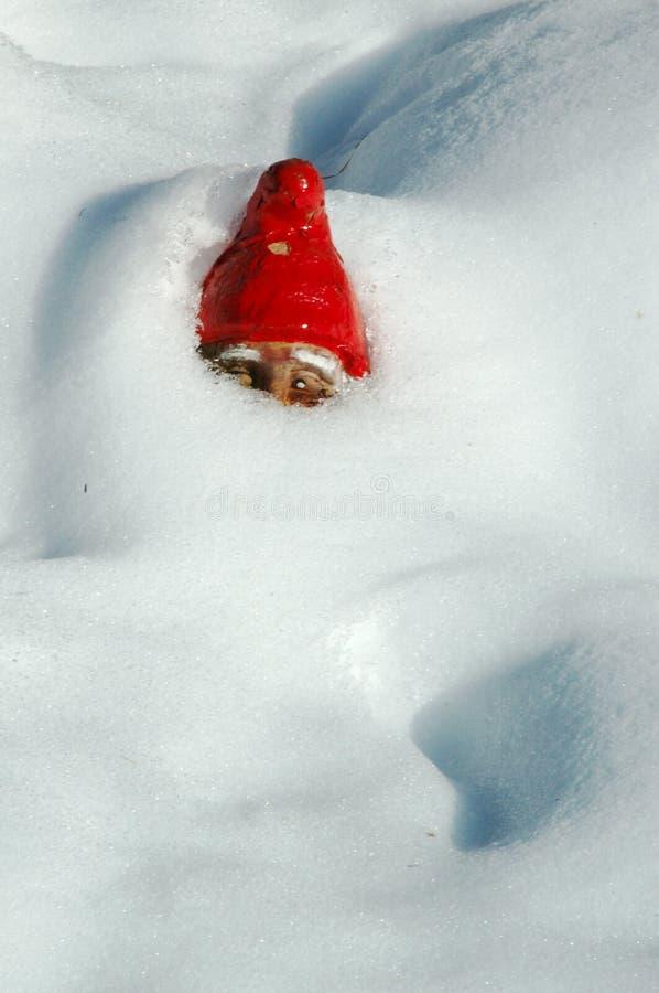 Garden Gnome in Snow royalty free stock photo