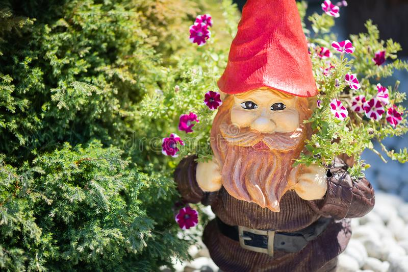Garden gnome surrounded by beautiful flowers stock photography