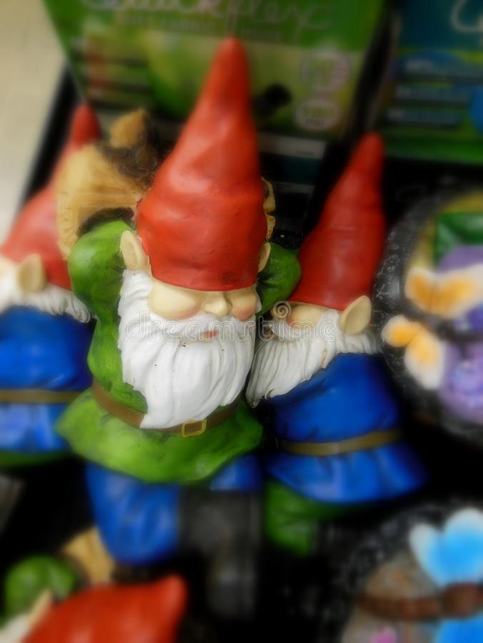 Garden Gnomes Sleeping. Sleeping Garden Gnomes resting on the job.  Gnomes have been around since the 1800`s.  They are little tiny statues that you put in your royalty free stock photo