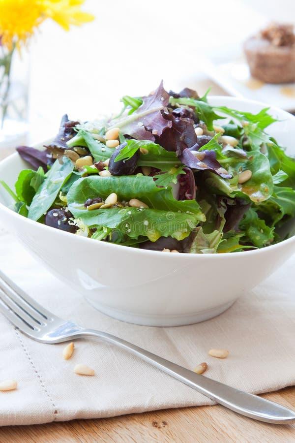 Garden greens salad royalty free stock image