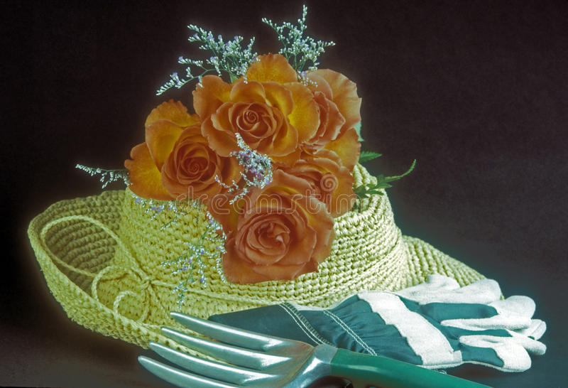 Garden hat, roses, gloves royalty free stock image