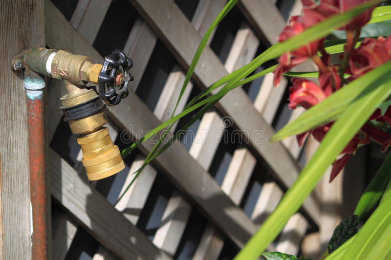 Garden Hose Bib. With pipe and plants stock image