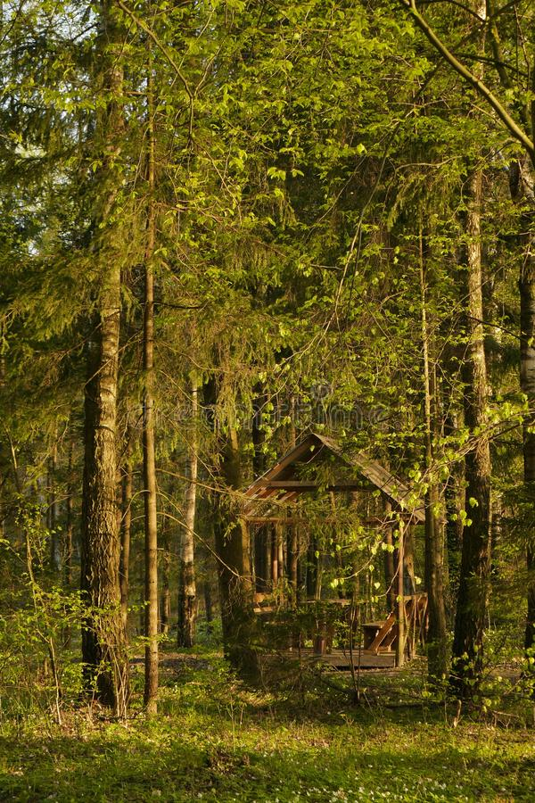 Garden house in the forrest in summer royalty free stock images
