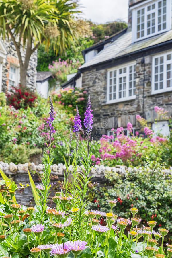 Garden and house, village Port Isaac. Garden and old house, old village Port Isaac stock images
