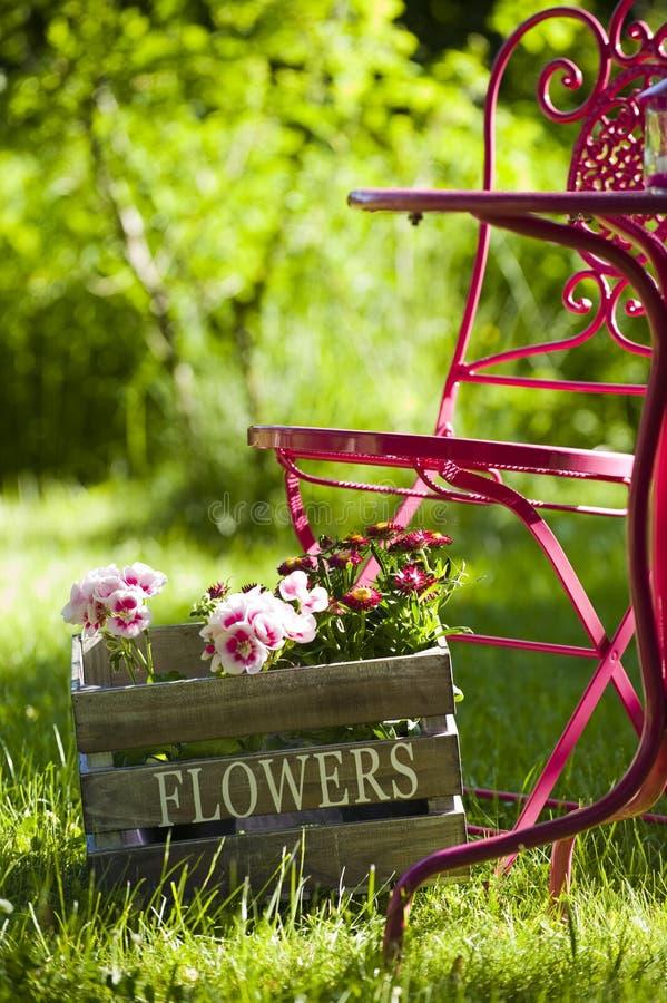 Free Garden Idyll Stock Photos - 25157803