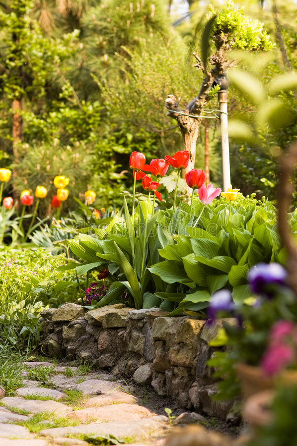 Free Garden In Spring Stock Photos - 8425513