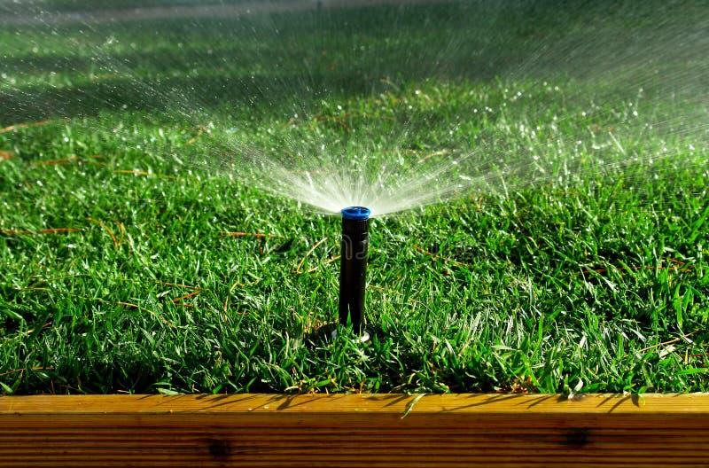 Garden irrigation system stock photography
