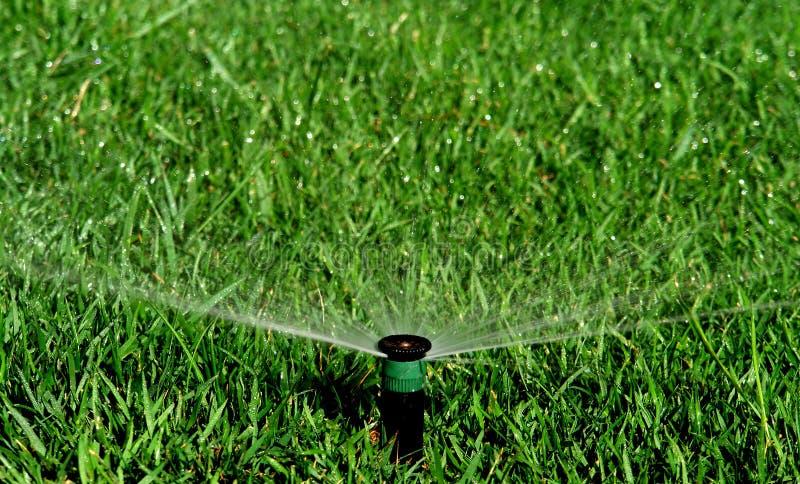 Garden irrigation system royalty free stock image