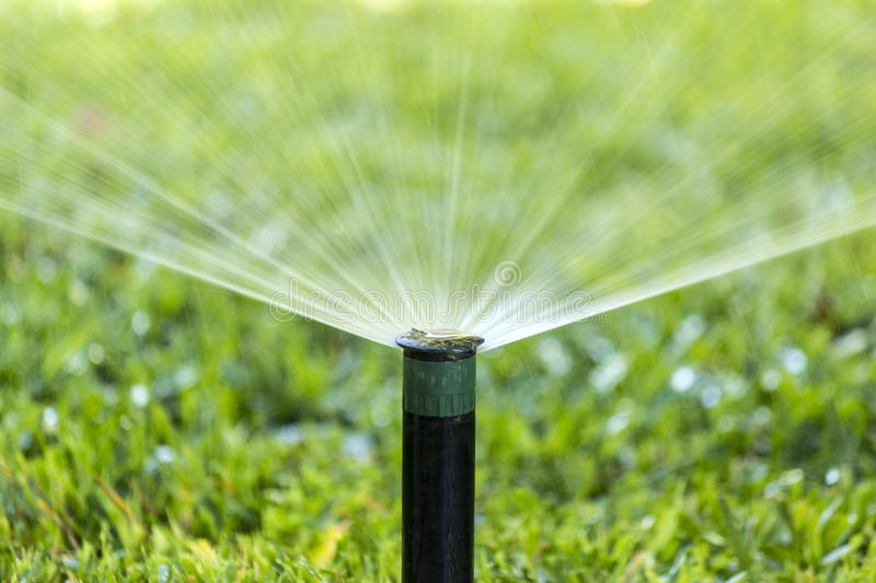 Garden Irrigation system spray watering lawn. royalty free stock photography