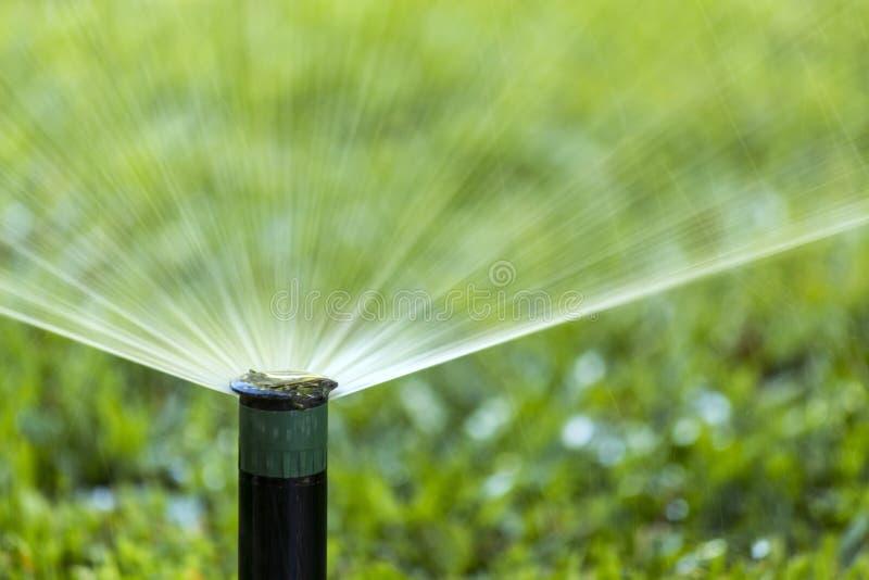 Garden Irrigation system spray watering lawn. royalty free stock photos