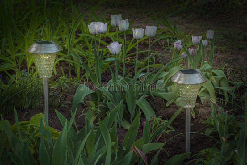 Garden lamp solar powered in a spring garden stock photography