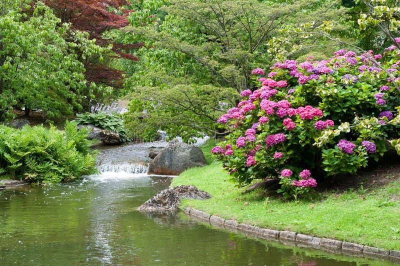 Japanese garden landscape royalty free stock photos