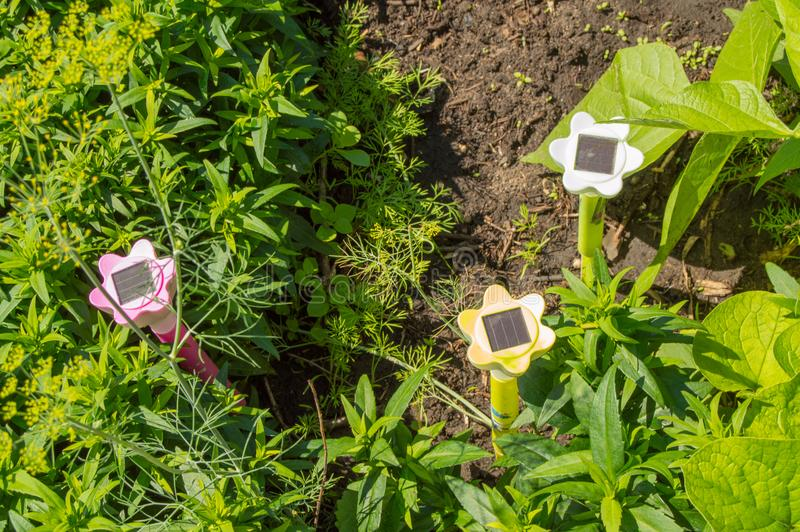 Garden lanterns in the flower beds, garden design, solar lamp royalty free stock photo
