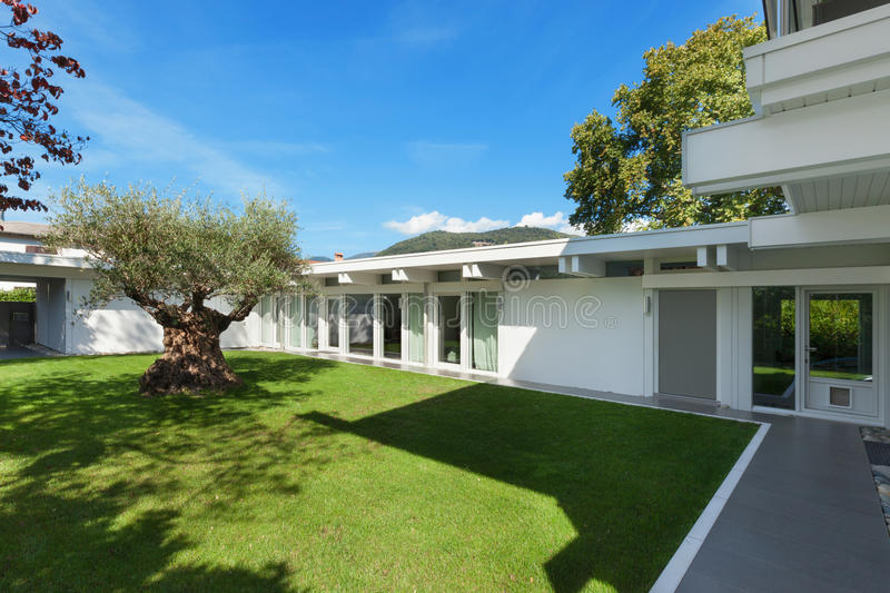 Garden of a modern house with olive tree stock images