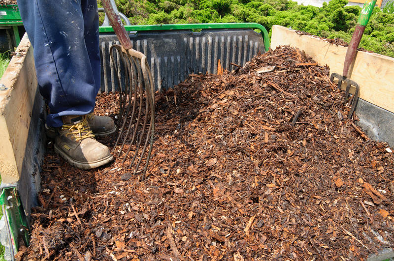 Garden Mulch Royalty Free Stock Photography