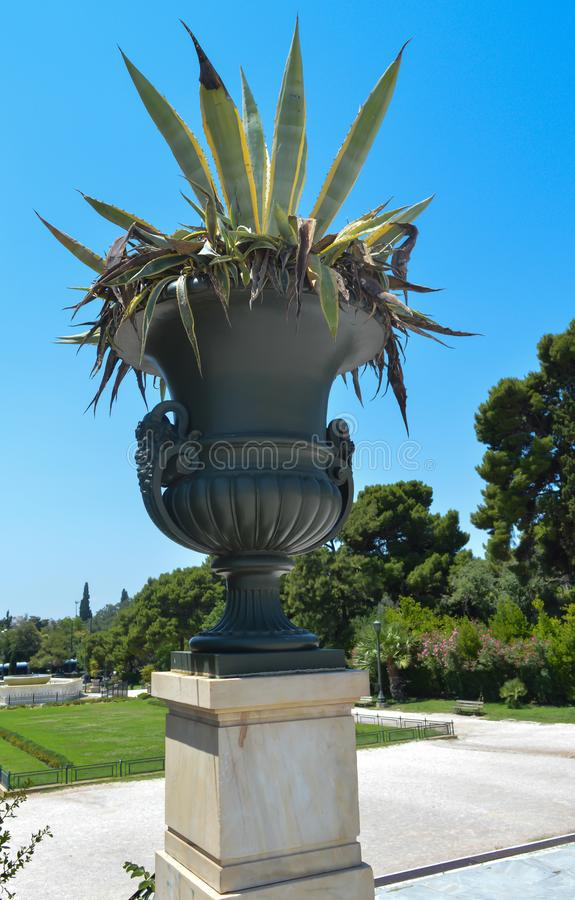 Garden near Zappeion in Athens, Greece on June 23, 2017. ATHENS, GREECE - JUNE 23: Garden near Zappeion in Athens, Greece on June 23, 2017 royalty free stock images