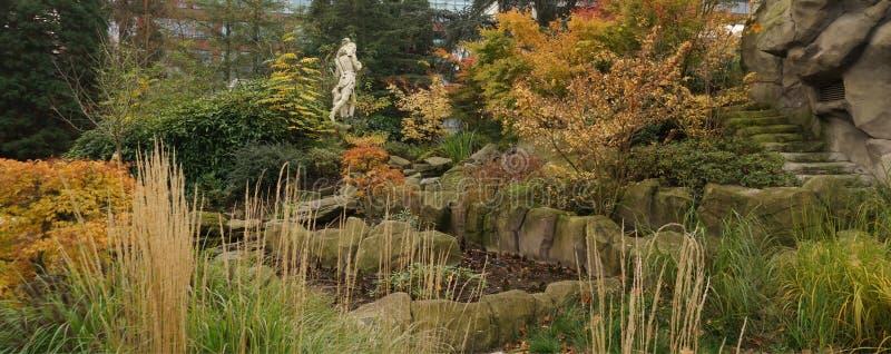 In a garden. November in the garden of the zoo in Antwerp, Belgium royalty free stock image