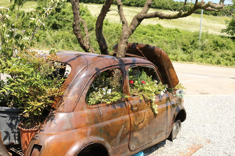 The garden of an old Fiat 500. Decoration of Summer made with beautiful flowers and and old Fiat 500 royalty free stock image