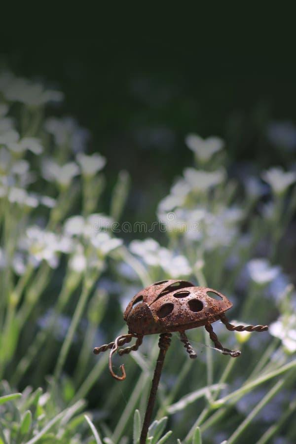 Download Garden Ornament stock image. Image of rusty, ladybird - 25080773