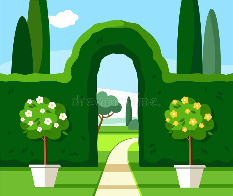 Garden, Park, green arch, trees are blooming, coloured illustrations./. Corner of the Park with a green arch high trimmed bushes and flowering trees in pots royalty free illustration