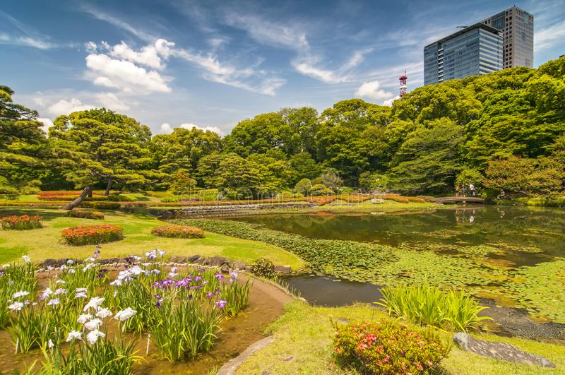 Garden in the park at Imperial Palace Tokyo Japan.  stock image