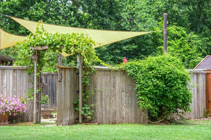 Garden or party area shaded by sails and an umbrella behind privacy fence with open gate  with vines growing on a trellis and on royalty free stock photo