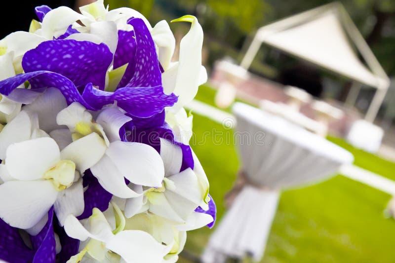 Garden party table royalty free stock photo