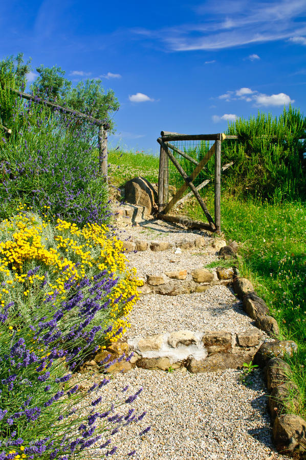 Garden path. With steps and bordering flowers leading to gate stock photo