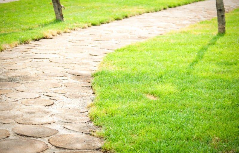 Download Garden path stock photo. Image of grassy, scenics, idyllic - 26061232