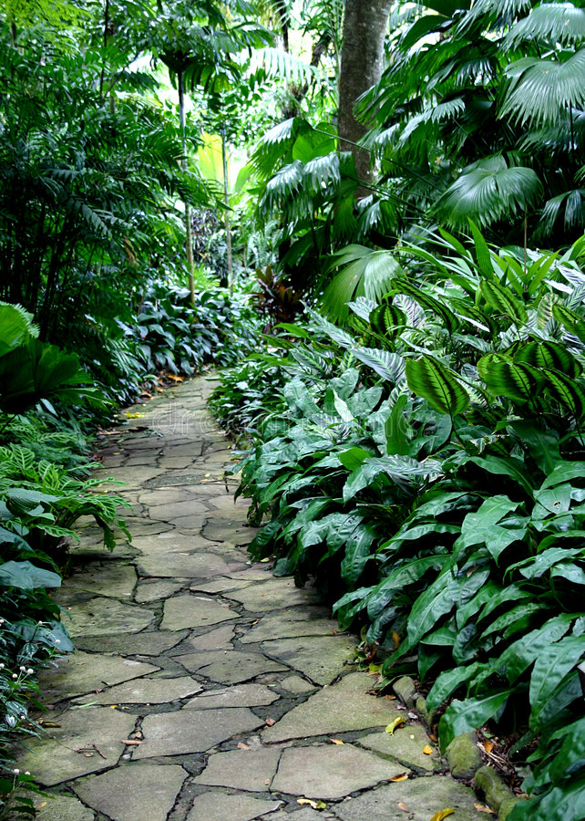 Download Garden Path #4 stock image. Image of light, pathway, shadow - 130213