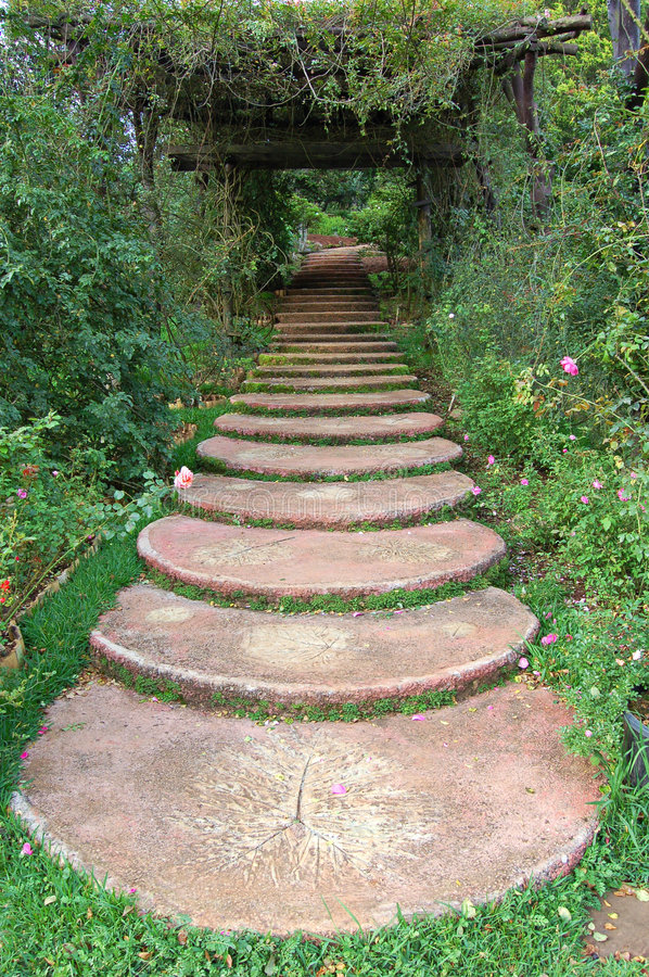 Download Garden path stock image. Image of green, plants, rose, greenery - 891201