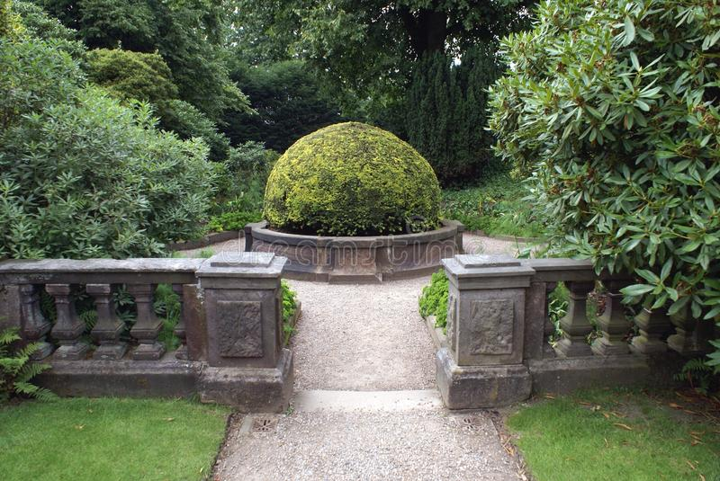 Garden pathway with a yew topiary tree stock photography