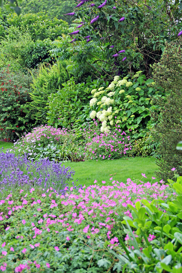 Download Garden of peace stock photo. Image of tree, flower, landscape - 25551138
